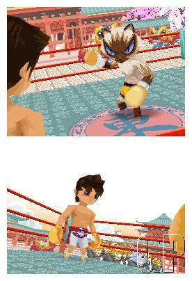 animal_boxing_asia4.jpg
