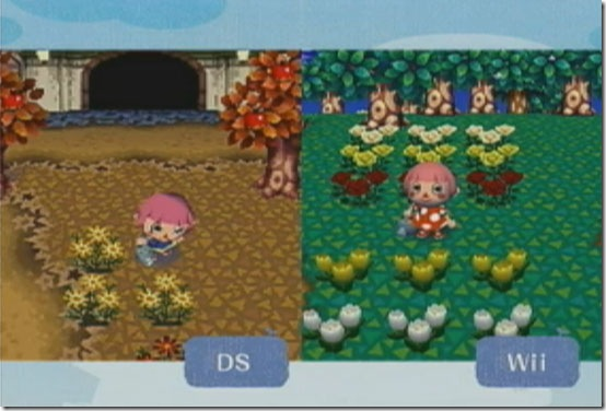 Animal Crossing: City Folk - DS to Wii character ...