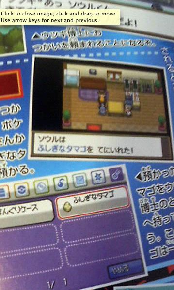 HeartGold SoulSilver Info Picture-14